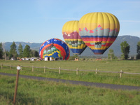 Hot Air Ballons in the Tetons